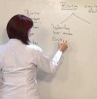 AÖF İşletme Fakültesi Soru Çözümleri
