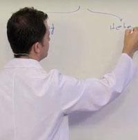 LYS Biyoloji Çözümlü Soru Bankası: