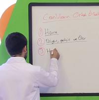 LYS Biyoloji Soruları ve LYS Biyoloji Soru Çözümleri