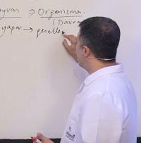 LYS Psikoloji Soruları ve LYS Psikoloji Soru Çözümleri
